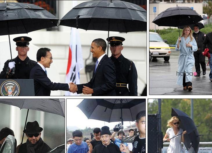 Best custom umbrellas