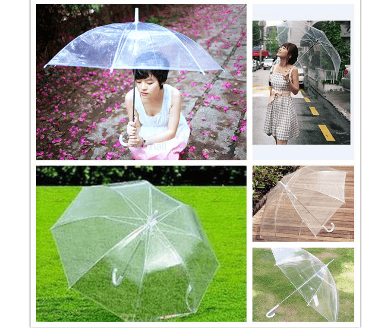 clear dome umbrella girl