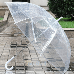 clear-dome-umbrella