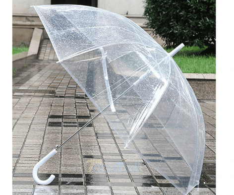 clear dome umbrella white handle