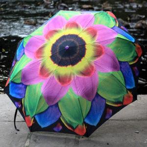 normal_petal-pretty-umbrella