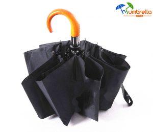 Auto Open&close Wind-resistant Folding Umbrella