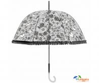 Transparen umbrella