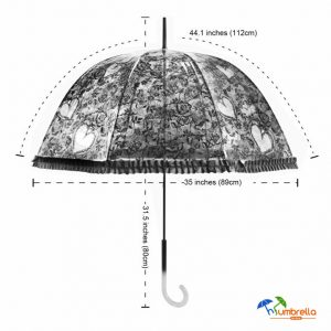 Transparent Dome umbrella