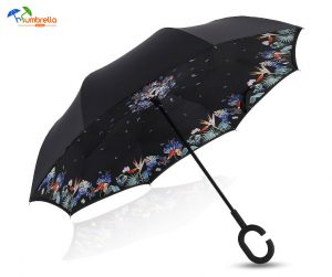 Custom Umbrella Printing