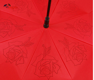 Latest Invention Double Layer Auto Open Inverted Umbrella
