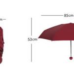 Capsule Umbrella Size