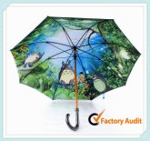 Double Canopy Umbrella (7)