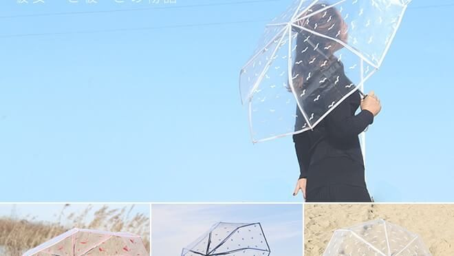 Transparent/Clear Umbrellas
