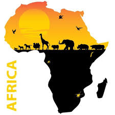 Umbrella Wholesaler Africa (2)