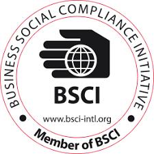 BSCI Logo