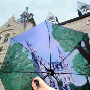 northwestern university umbrella
