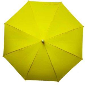 Light up umbrella with led light