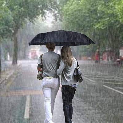 Travel-Umbrella-Windproof